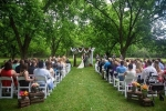 Wedding on the Lawn.jpg